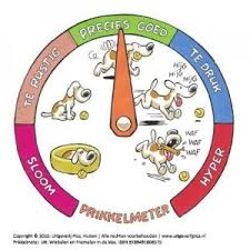 prikkelmeter